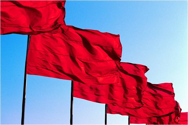 Organisational red flags