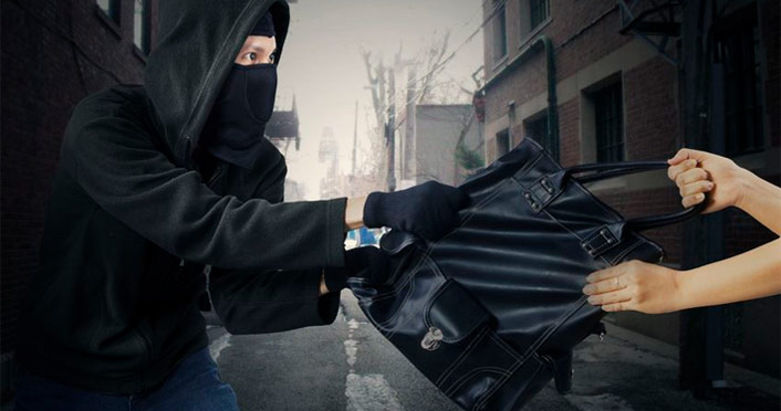 stolen handbag